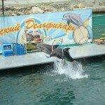дельфинарий в анапе 150x150 Прогулка по Анапе....