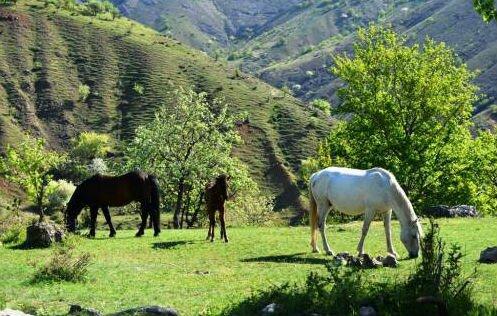 экотуризм Экологический туризм в Крыму